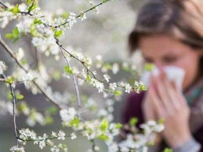 秋季過敏高發,我們該如何防治?