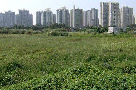 2020年底山东所有批而未供、闲置土地将全部得到有效处置