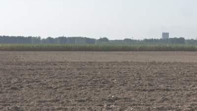 三秋生產進行時!濟寧農技專家田間指導秋收秋種