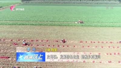 汶上县次邱镇:发展特色农业 助推乡村振兴