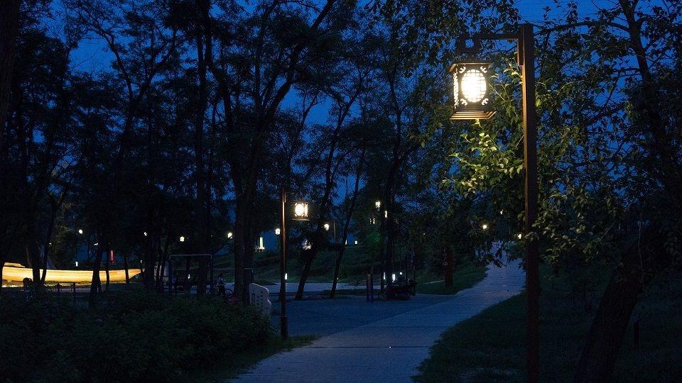 洸河公园路灯不亮、树枝遮明  济宁市城管局:立即排查