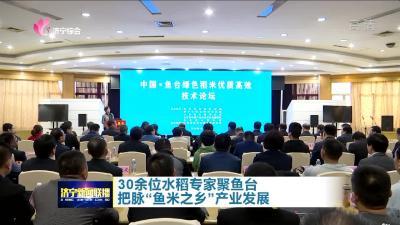【鄉村振興】 30余位水稻專家聚魚臺 把脈魚米之鄉產業發展