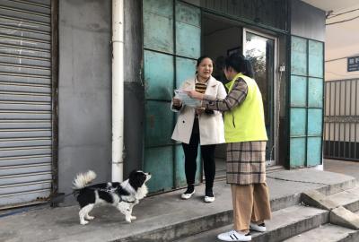 争做文明养犬人 古槐街道县前街社区开展文明养犬宣传活动