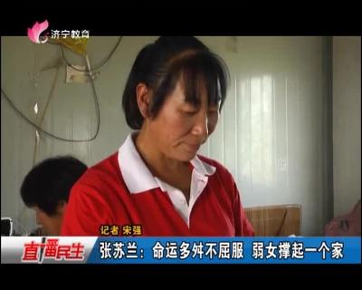张苏兰:命运多舛不屈服 弱女撑起一个家