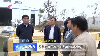 微山县领导督导检查重点项目建设情况