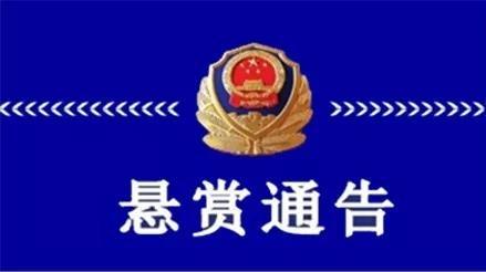 济宁警方发布悬赏通告!