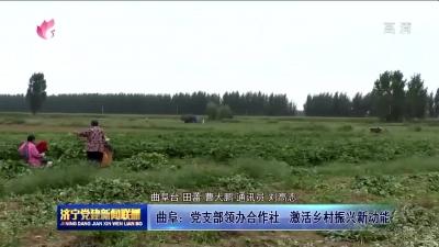 曲阜:党支部领办合作社 激活乡村振兴新功能