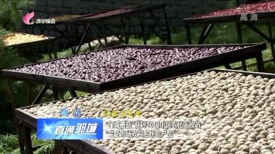"""邹城:""""邹城蘑菇""""获评2019中国农民丰收节""""最受市场欢迎名优农产品"""""""