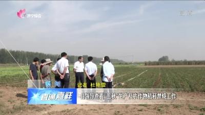 """嘉祥县领导查看""""三秋""""生产及农作物秸秆禁烧网上投注彩票APP"""