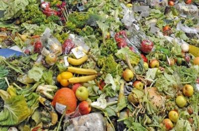 人均每餐丟掉近2兩食物?舌尖上的浪費何時休