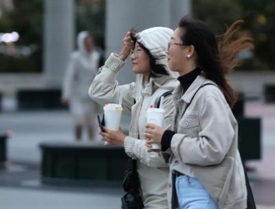 冷空气已到货!山东发布大风蓝色预警 这11市要注意