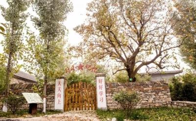 ?邹城6村庄入选省级美丽乡村示范村 有没有你的老家?