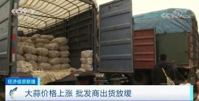 新蒜價格爬上三年新高,蒜商還舍不得賣?記者實地探訪金鄉市場