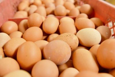 蛋壳颜色越深鸡蛋越有营养?吃鸡蛋别入这些误区