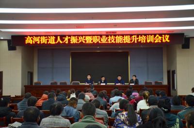金乡县高河街道人才振兴暨职业技能提升培训班开班