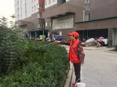创城|村居卫生月度考,环境变更好 太白湖新区许庄街道创城工作深入民心
