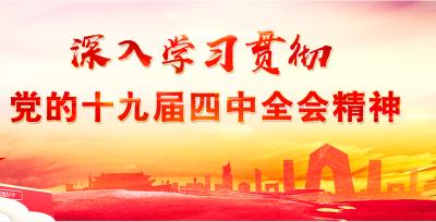 学习党的十九届四中全会精神 勇于担当作为 践行初心使命