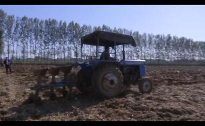 抓住雨后有利時機   加快小麥播種進度