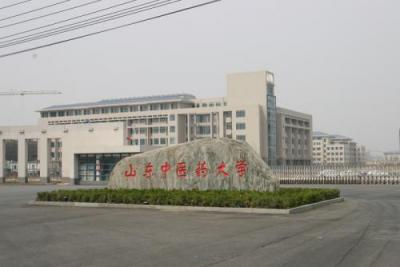 山东中医药大学中医学院到泗张镇开展义诊活动活动
