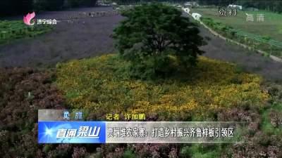 梁山賈堌堆農家寨:打造鄉村振興齊魯樣板引領區