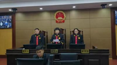 汶上公開審理宣判鄭燦筱等14人涉惡案件 最高判15年