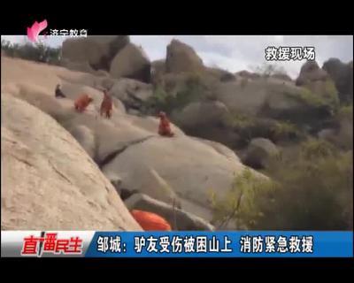 邹城:驴友受伤被困山上 消防紧急救援