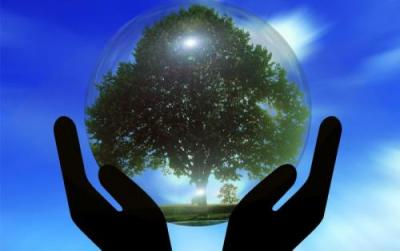 約談、問責!山東出台19條意見推進生態環保和經濟發展雙贏