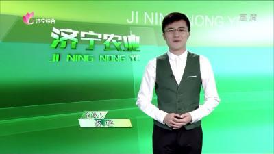 济宁农业——20191108