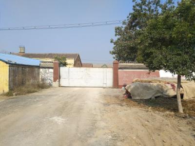 金乡一砂石料场未执行停产要求 相关人员被拘留