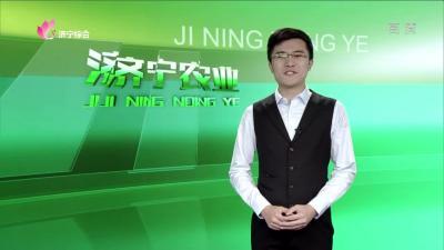 济宁农业——20191115