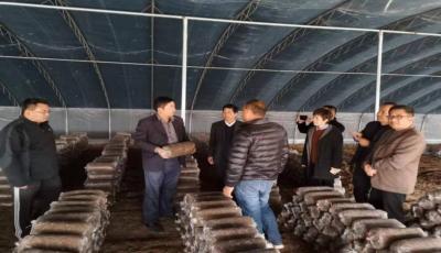 鱼台县罗屯镇乡村振兴服务队帮扶项目评审会召开