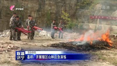 嘉祥:开展辖区山林应急演练