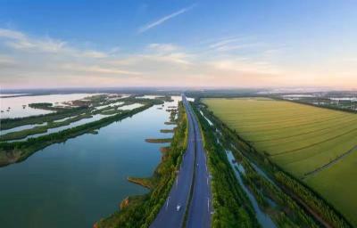 太白湖新区湿地:生态与美的统一 孕育百余种水生动植物