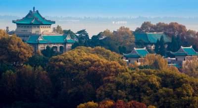 武汉大学清退92名留学生!曾上《非诚勿扰》的她也……