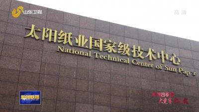 【冲刺四季度·企业最前线】太阳纸业:新技术开辟新市场