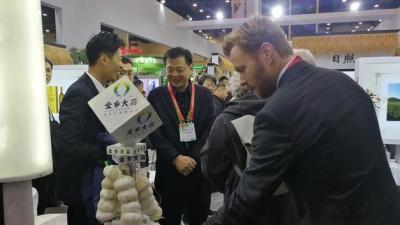 """金乡大蒜厉害了!蝉联八年""""中国国际有机食品博览会""""金奖"""