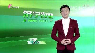 济宁农业——20191220