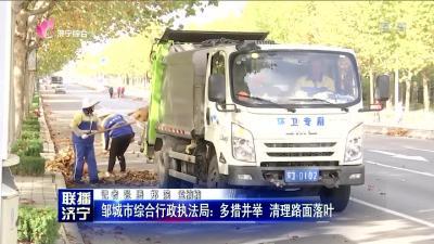 邹城市综合行政执法局:多措并举 清理路面落叶
