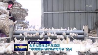 """金乡大蒜连续八年蝉联""""中国国际有机食品博览会""""金奖"""