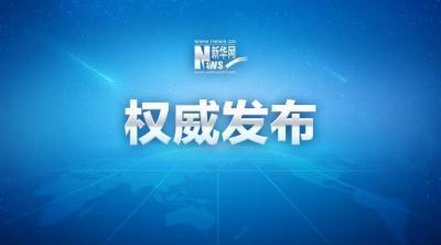 """新華微評:""""耳光書記""""被免職警示了什么"""