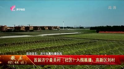 最美村(社区)丨首届济宁最美村(社区)入围展播:高新区刘村