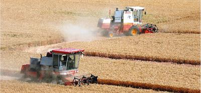 2019年全国粮食总产量66384万吨 创历史最高水平
