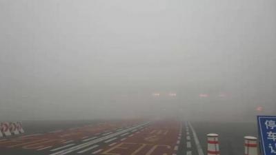 回家过年注意 山东8个市出现强浓雾 260多个高速收费站封闭