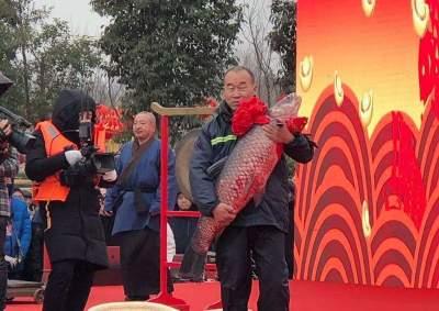 济宁第五届太白湖捕鱼节开幕  头鱼重达83斤