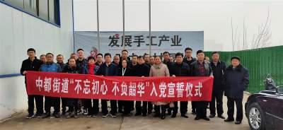 汶上县中都街道举办2019年度预备党员入党宣誓仪式