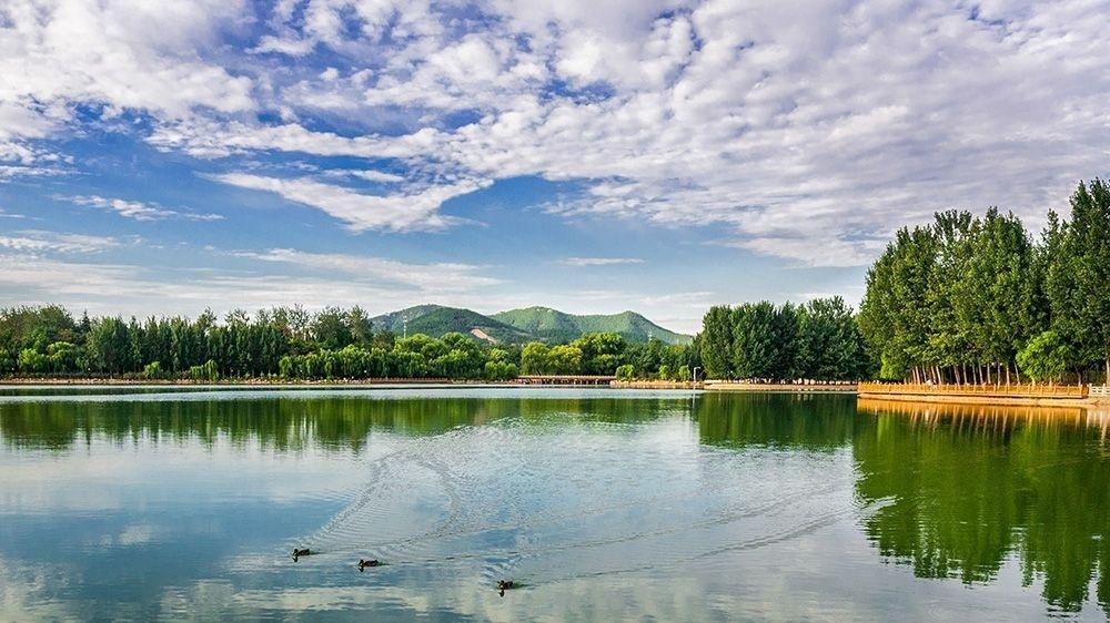 官宣!南陽湖農場將大力發展田園綜合體等重點文旅項目