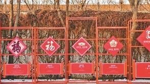 新四大年俗出炉:集五福、抢红包、全家游入选