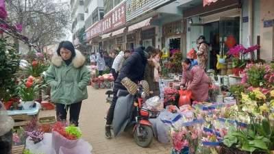 百花盛放迎新春,济宁花鸟鱼虫市场年味儿浓