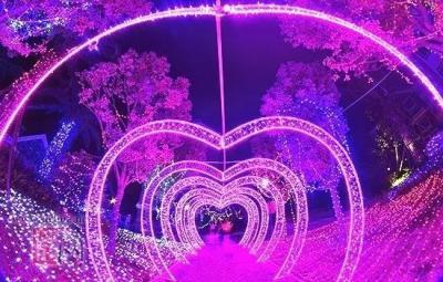 惊艳金乡!2020金乡梦幻灯光艺术节,1月22日盛大开幕!