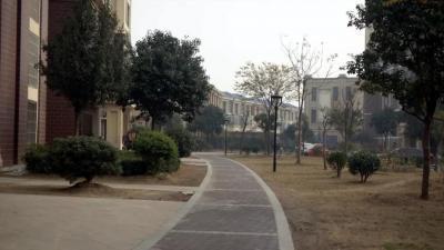 嘉祥县物业管理见实效 优质服务暖民心